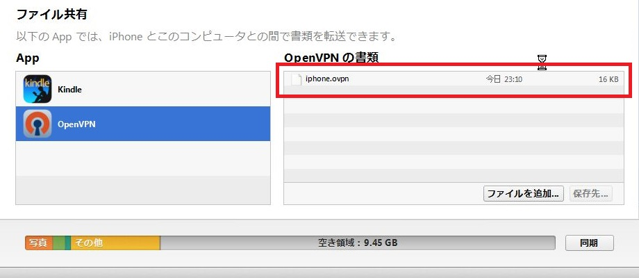 openvpn_iphone11
